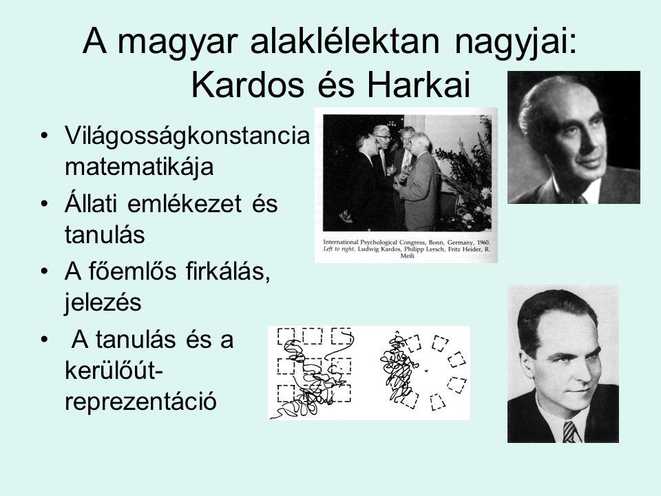 A magyar alaklélektan nagyjai: Kardos és Harkai