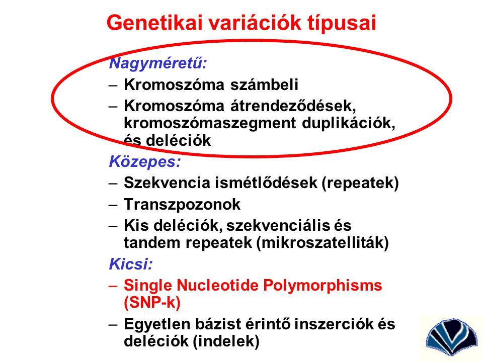 Genetikai variációk típusai