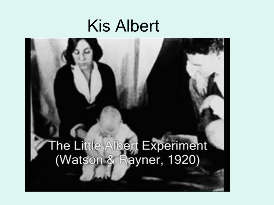 Kis Albert