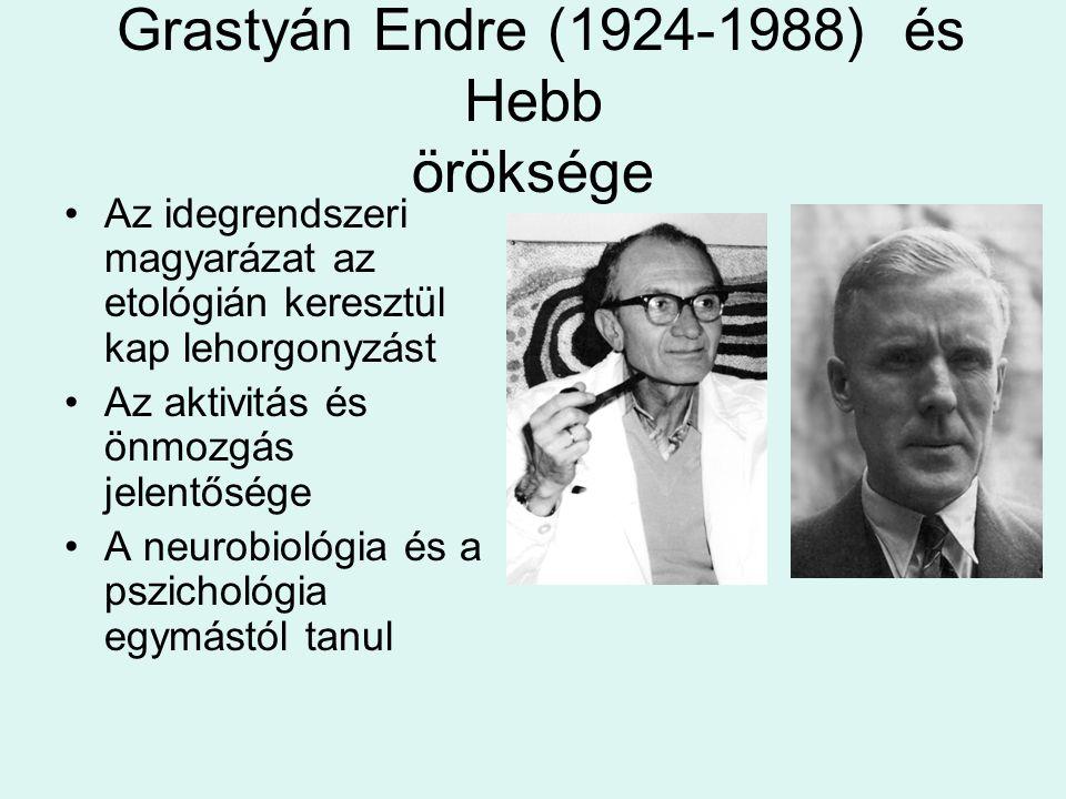Grastyán Endre (1924-1988) és Hebb öröksége