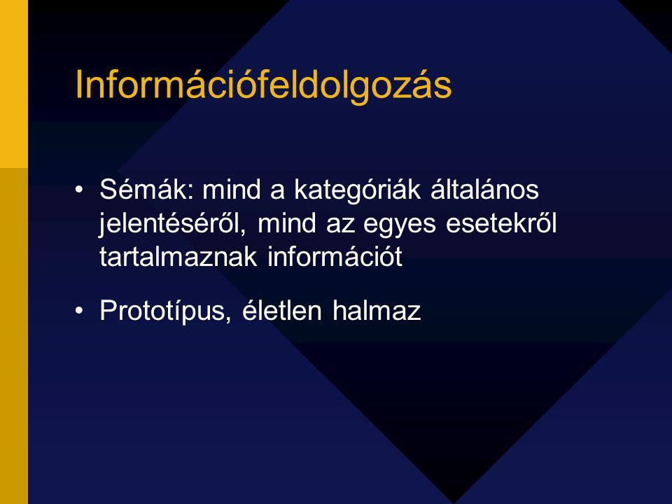 Információfeldolgozás