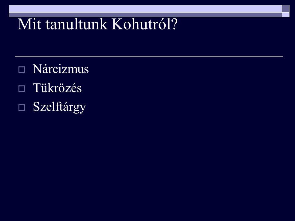 Mit tanultunk Kohutról