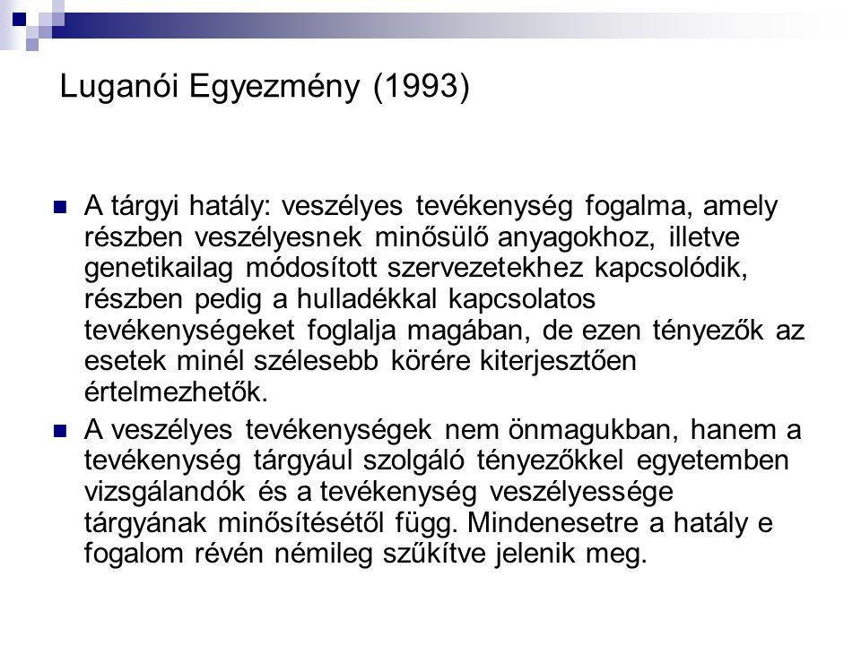 Luganói Egyezmény (1993)