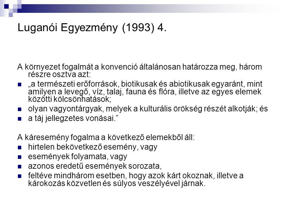 Luganói Egyezmény (1993) 4. A környezet fogalmát a konvenció általánosan határozza meg, három részre osztva azt: