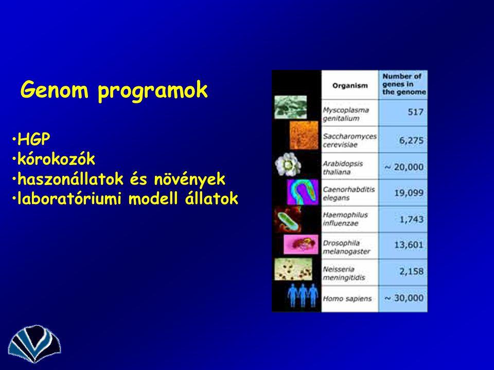Genom programok HGP kórokozók haszonállatok és növények