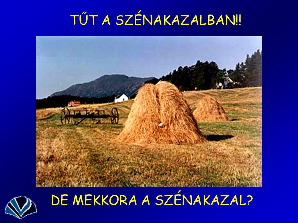 TŰT A SZÉNAKAZALBAN!! DE MEKKORA A SZÉNAKAZAL