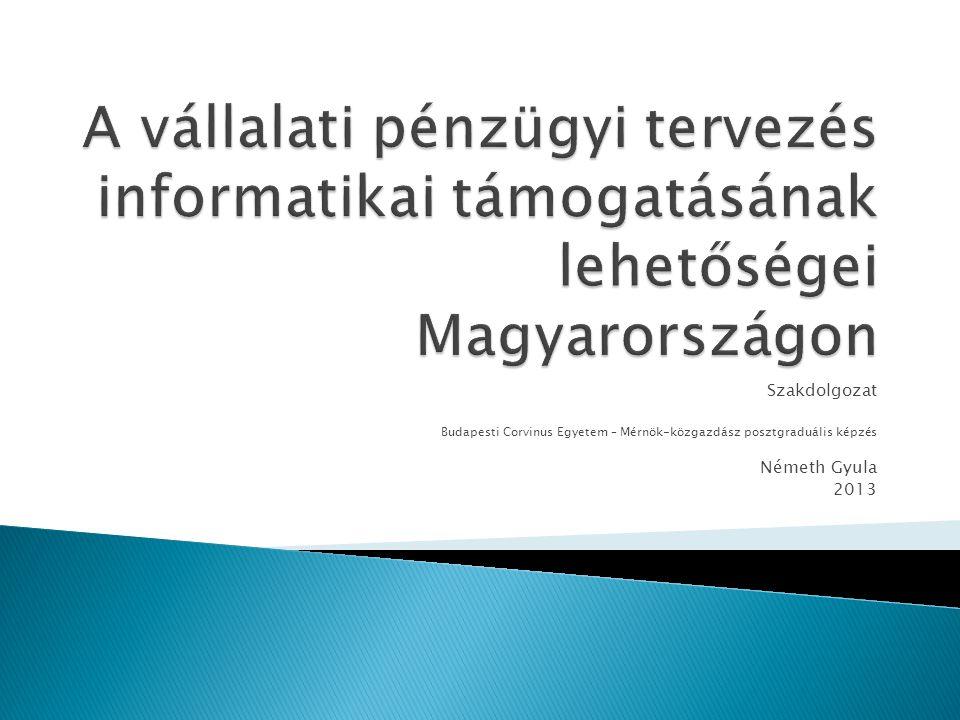 A vállalati pénzügyi tervezés informatikai támogatásának lehetőségei Magyarországon