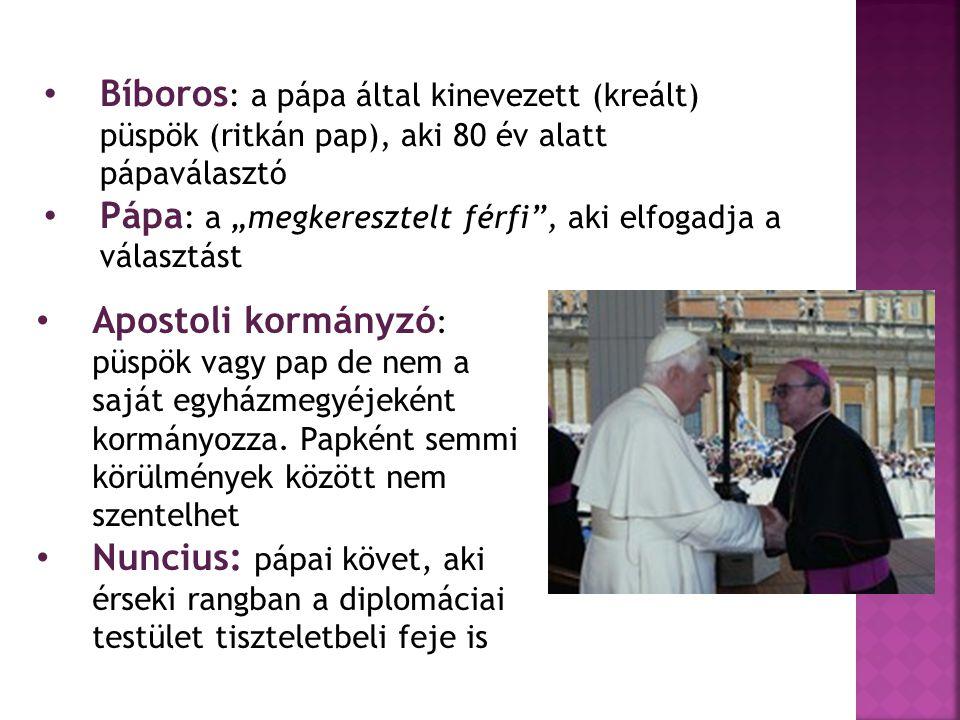 Bíboros: a pápa által kinevezett (kreált) püspök (ritkán pap), aki 80 év alatt pápaválasztó