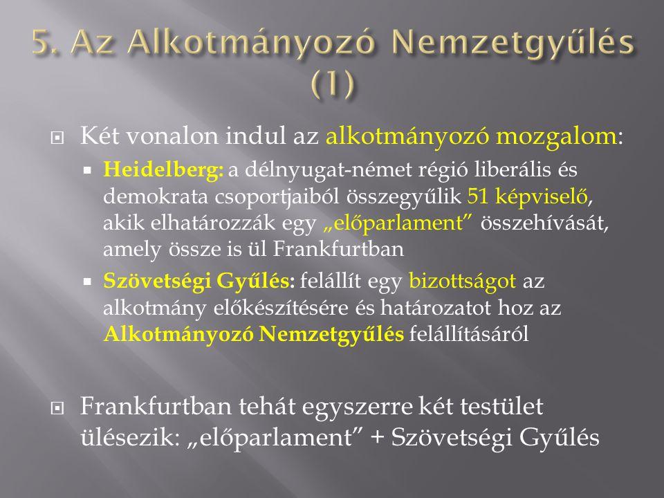 5. Az Alkotmányozó Nemzetgyűlés (1)