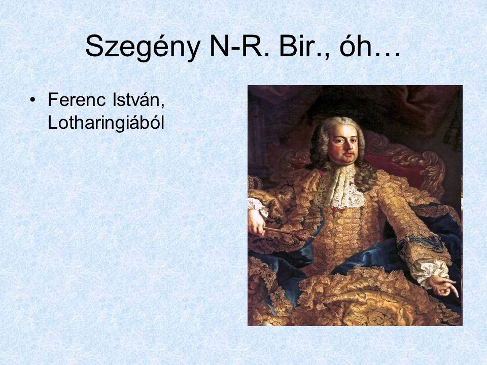 Szegény N-R. Bir., óh… Ferenc István, Lotharingiából