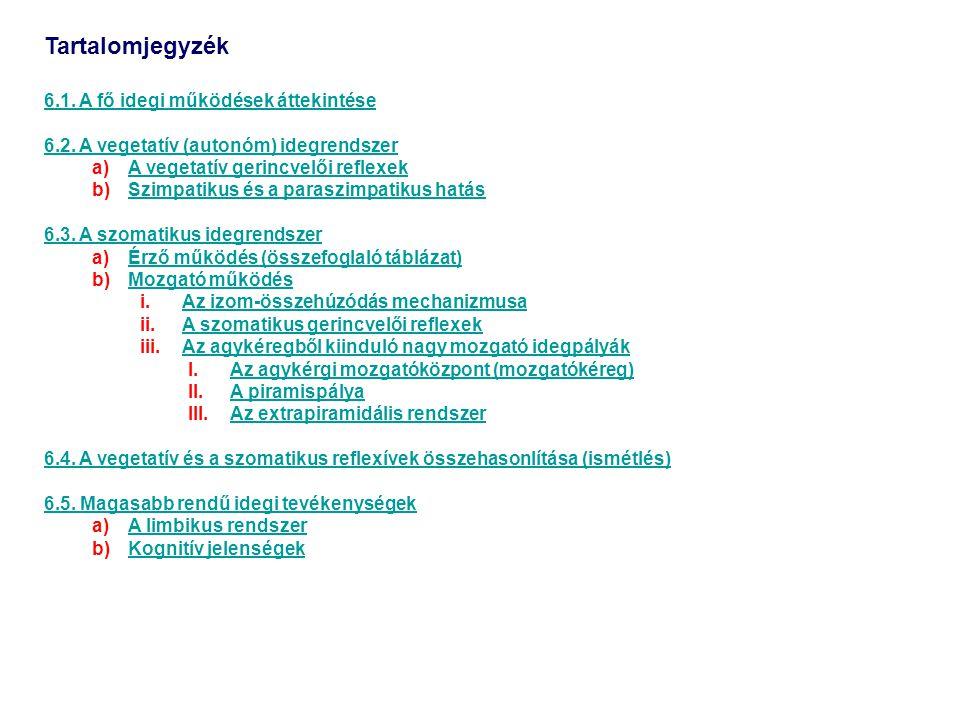 Tartalomjegyzék 6.1. A fő idegi működések áttekintése