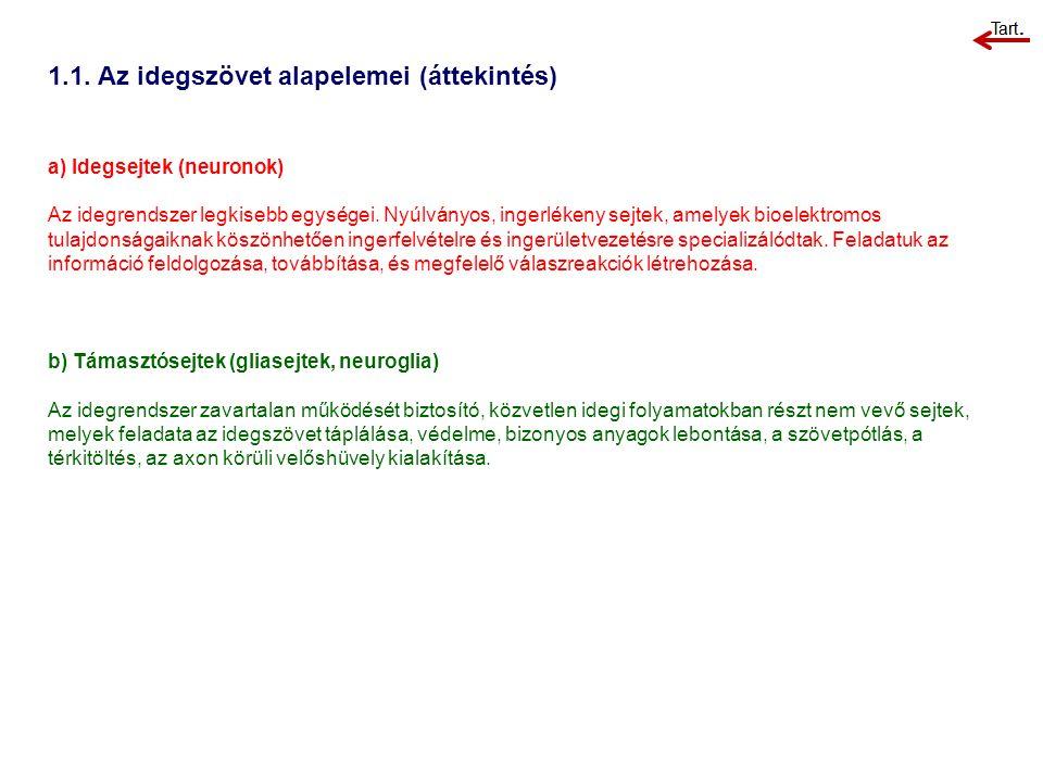 1.1. Az idegszövet alapelemei (áttekintés)