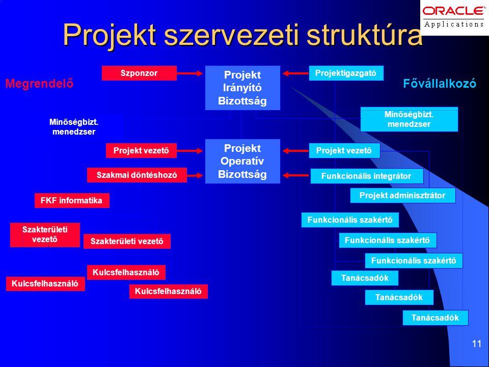 Projekt szervezeti struktúra
