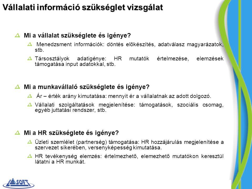 Vállalati információ szükséglet vizsgálat