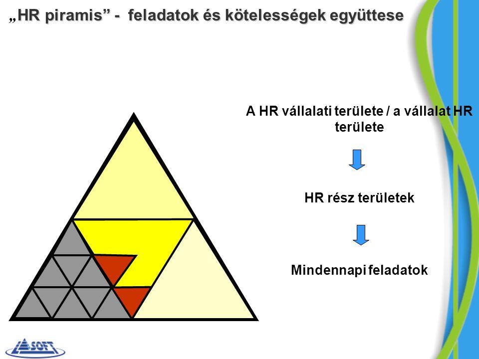 A HR vállalati területe / a vállalat HR területe
