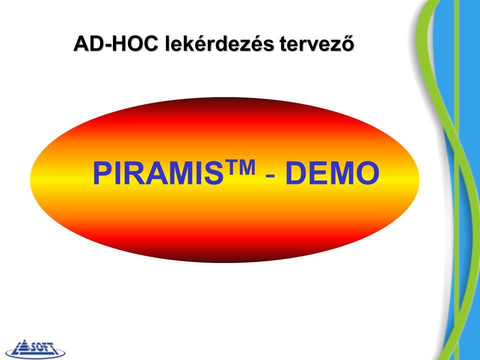 AD-HOC lekérdezés tervező
