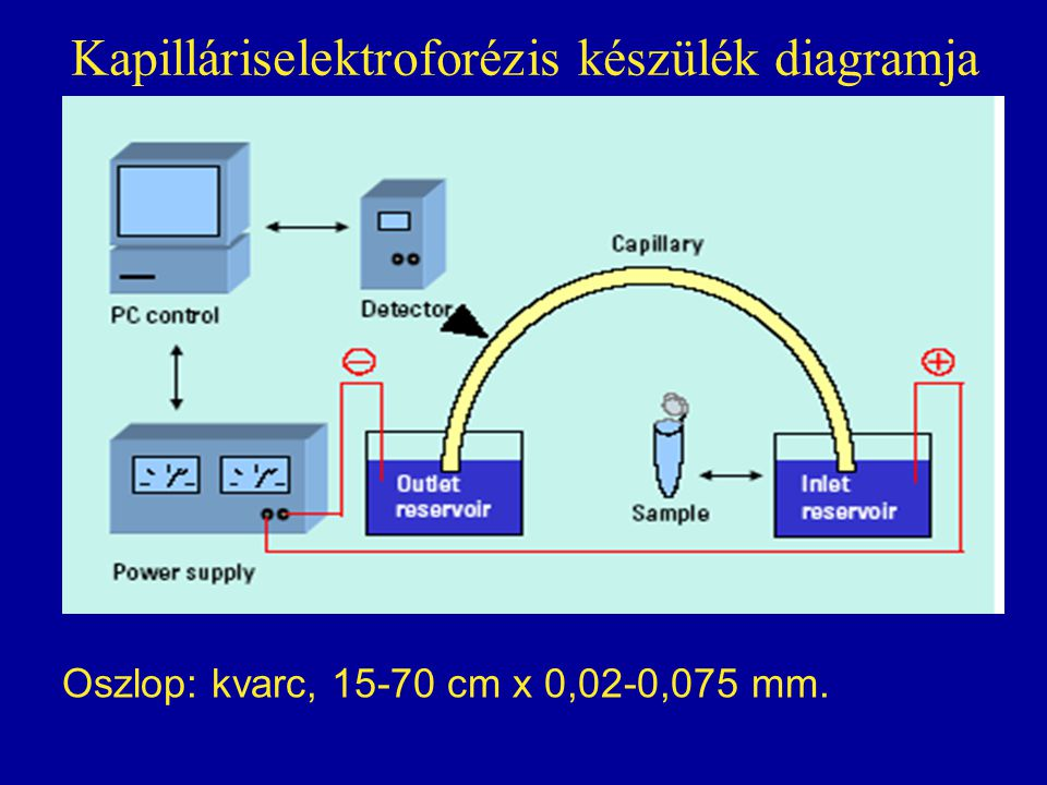 Kapilláriselektroforézis készülék diagramja