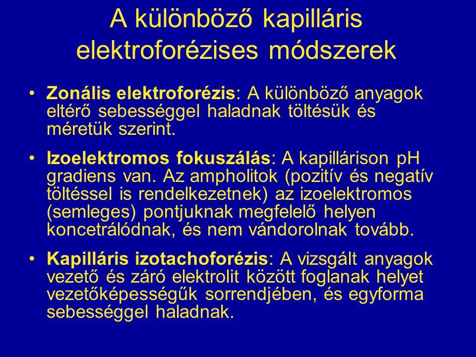 A különböző kapilláris elektroforézises módszerek
