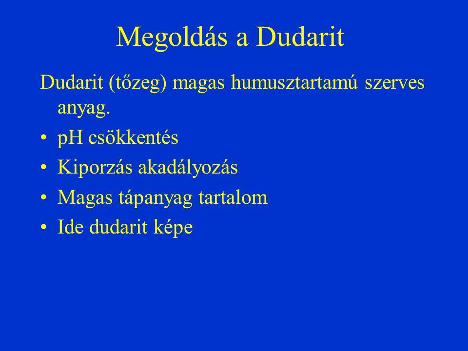 Megoldás a Dudarit Dudarit (tőzeg) magas humusztartamú szerves anyag.
