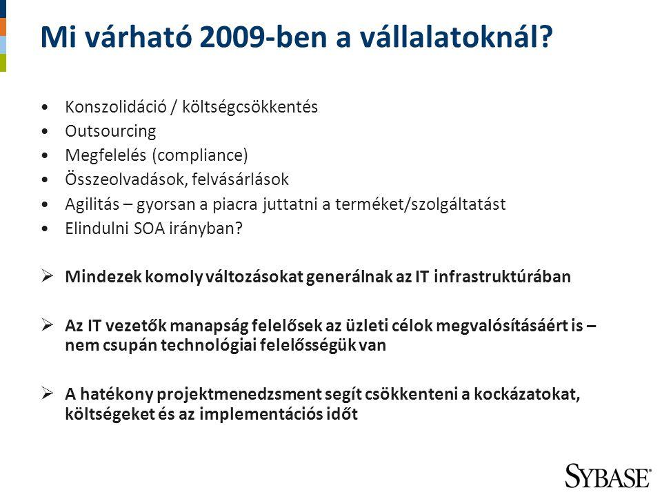 Mi várható 2009-ben a vállalatoknál
