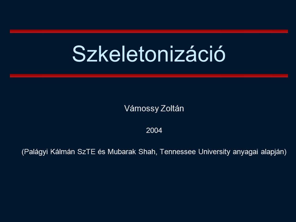 Szkeletonizáció Vámossy Zoltán 2004