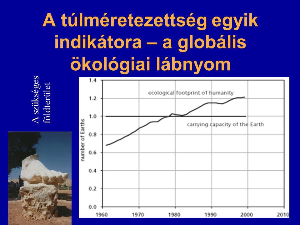 A túlméretezettség egyik indikátora – a globális ökológiai lábnyom