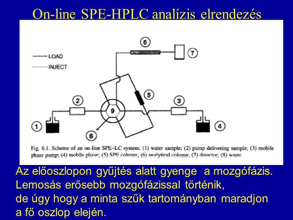 On-line SPE-HPLC analízis elrendezés