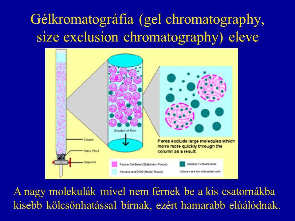 Gélkromatográfia (gel chromatography, size exclusion chromatography) eleve