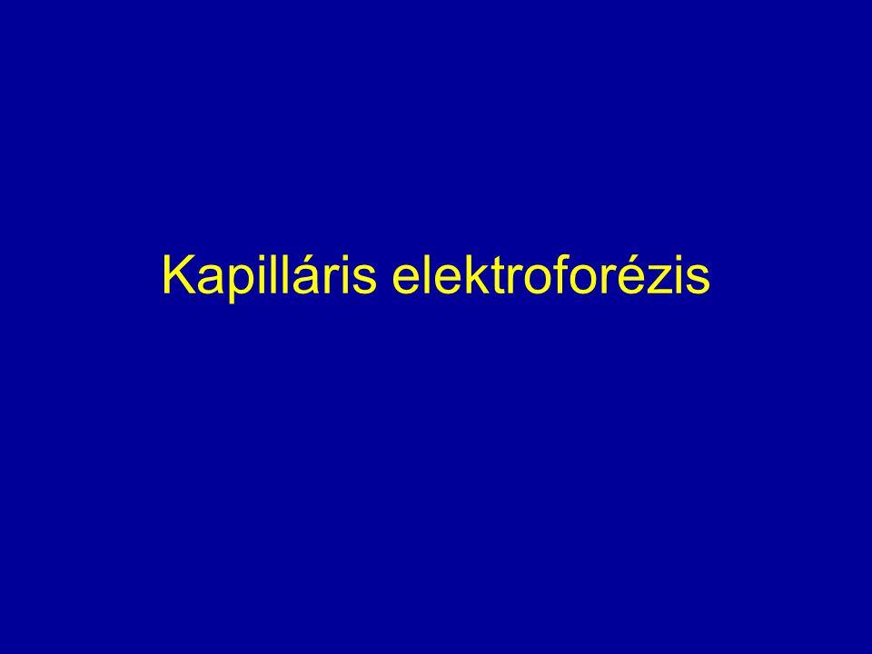 Kapilláris elektroforézis