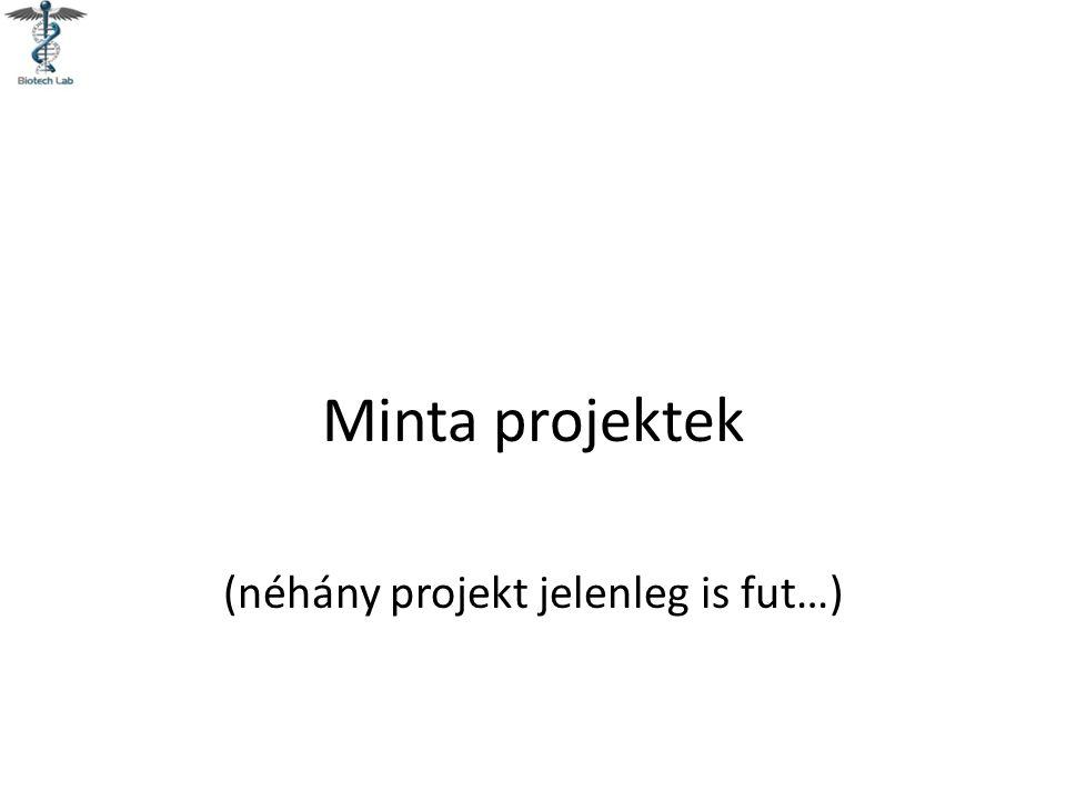 (néhány projekt jelenleg is fut…)