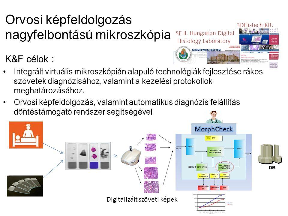 Orvosi képfeldolgozás nagyfelbontású mikroszkópia