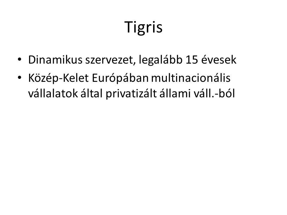 Tigris Dinamikus szervezet, legalább 15 évesek