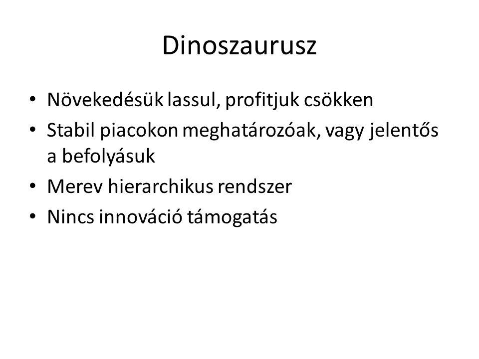 Dinoszaurusz Növekedésük lassul, profitjuk csökken