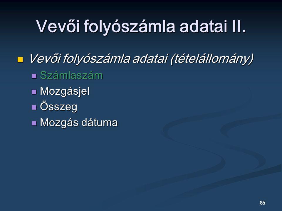 Vevői folyószámla adatai II.