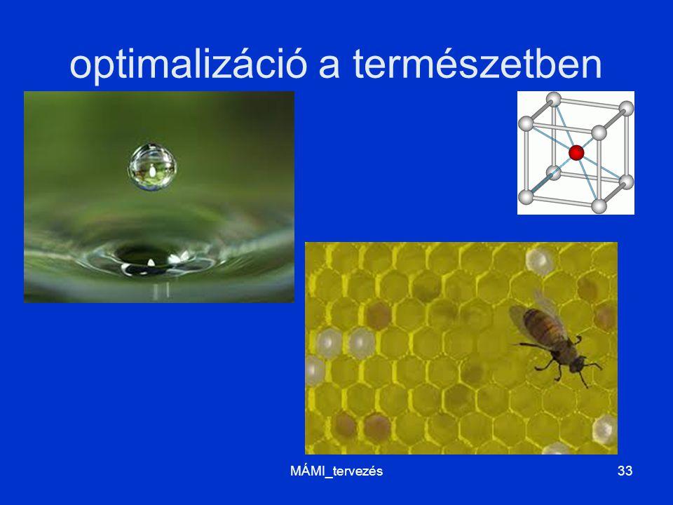 optimalizáció a természetben