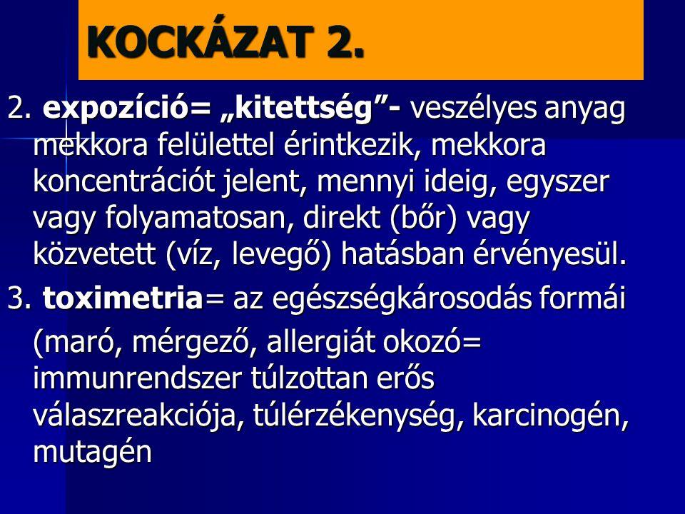 KOCKÁZAT 2.