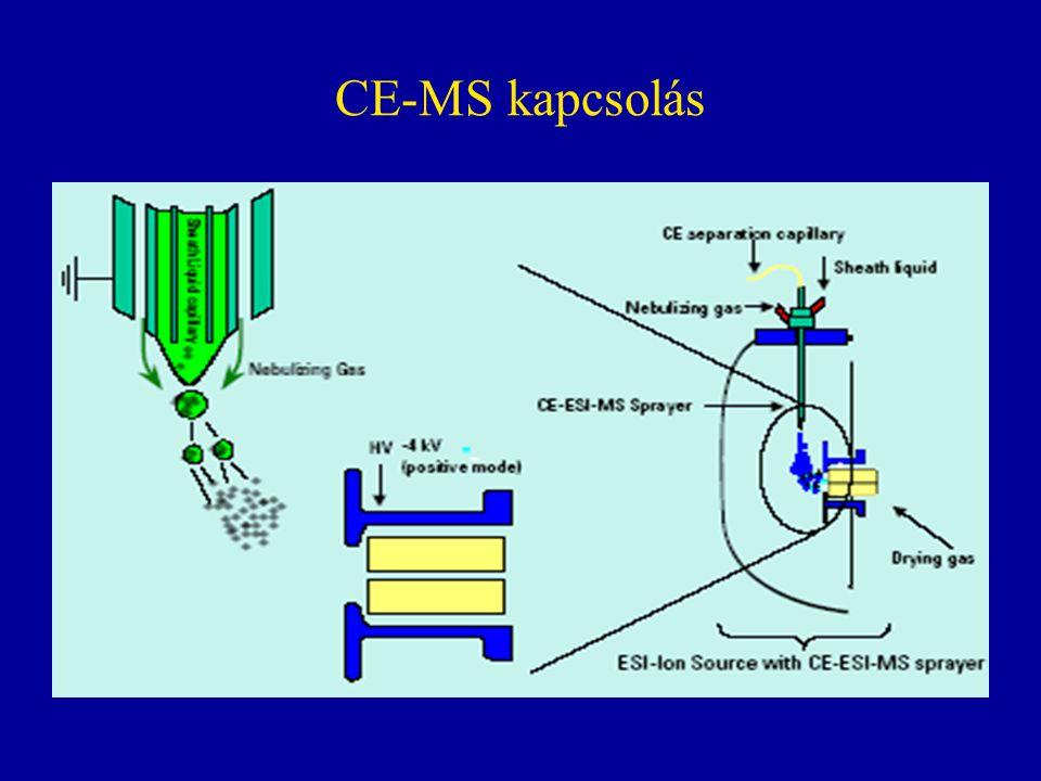CE-MS kapcsolás