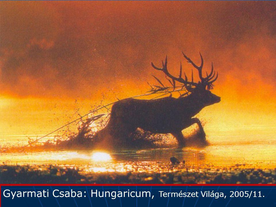 Gyarmati Csaba: Hungaricum, Természet Világa, 2005/11.