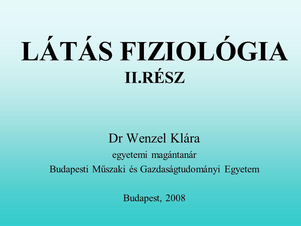 LÁTÁS FIZIOLÓGIA II.RÉSZ