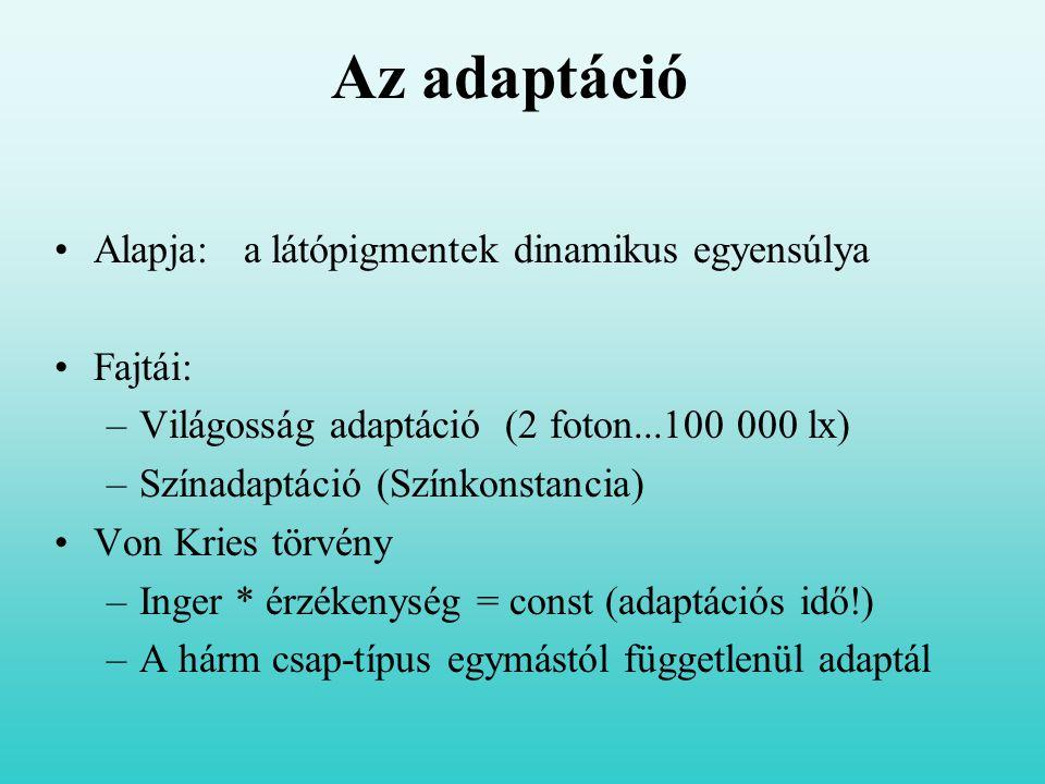 Az adaptáció Alapja: a látópigmentek dinamikus egyensúlya Fajtái: