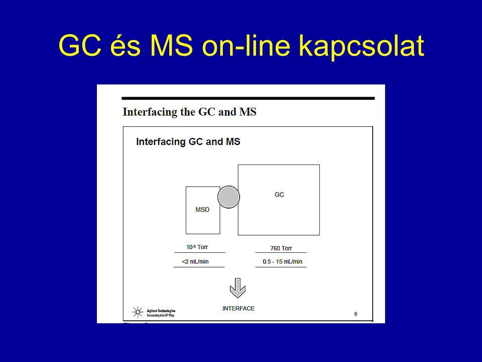 GC és MS on-line kapcsolat