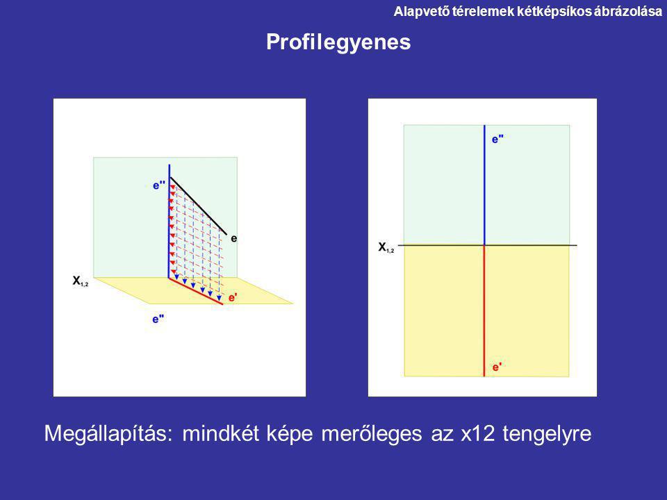 Megállapítás: mindkét képe merőleges az x12 tengelyre