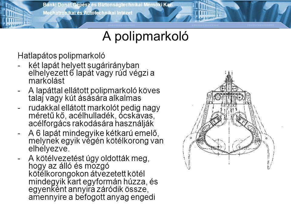 A polipmarkoló Hatlapátos polipmarkoló