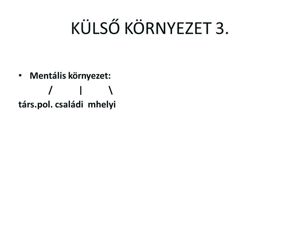 KÜLSŐ KÖRNYEZET 3. Mentális környezet: / | \ társ.pol. családi mhelyi