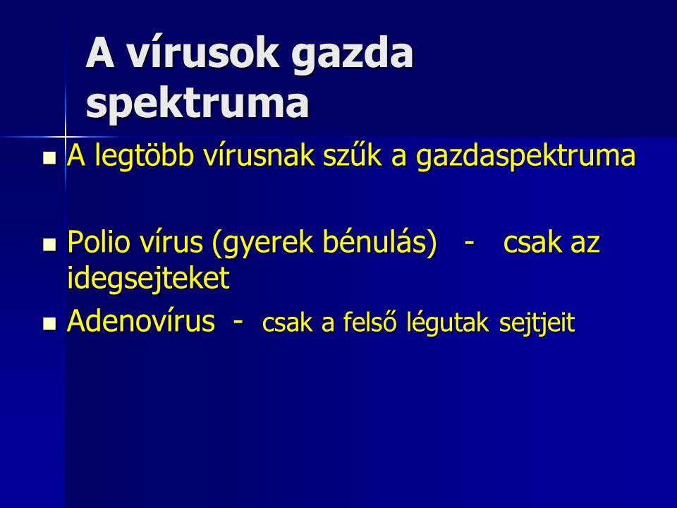 A vírusok gazda spektruma