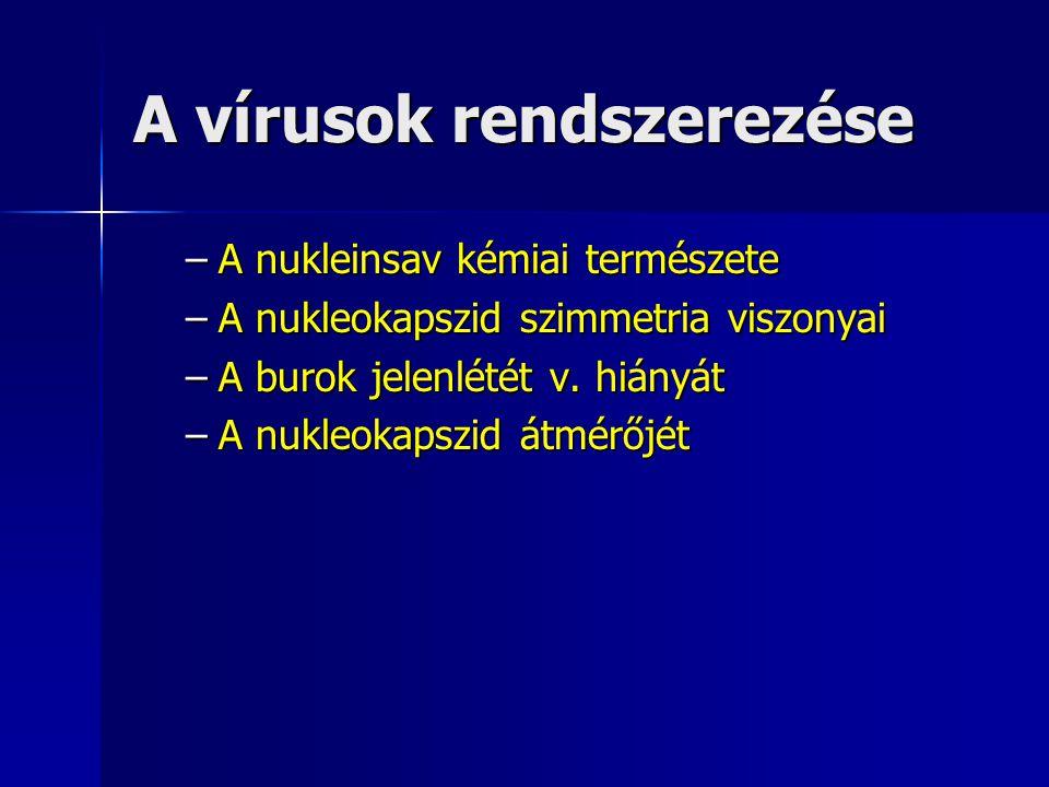 A vírusok rendszerezése