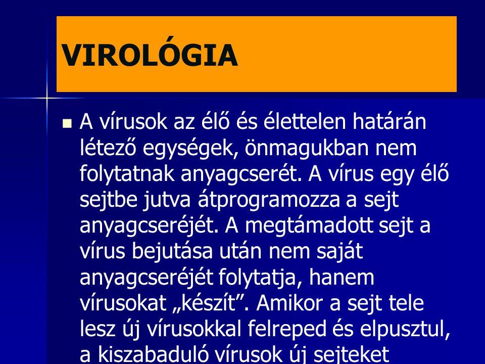 VIROLÓGIA