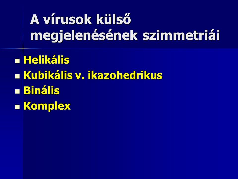 A vírusok külső megjelenésének szimmetriái