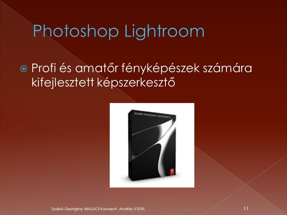 Photoshop Lightroom Profi és amatőr fényképészek számára kifejlesztett képszerkesztő.