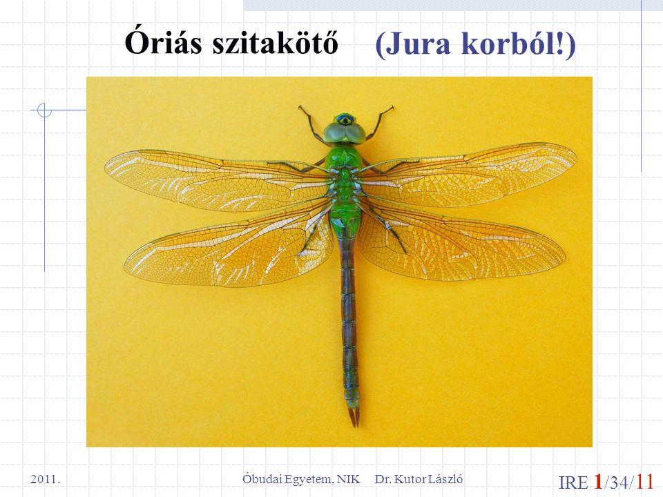 Óbudai Egyetem, NIK Dr. Kutor László